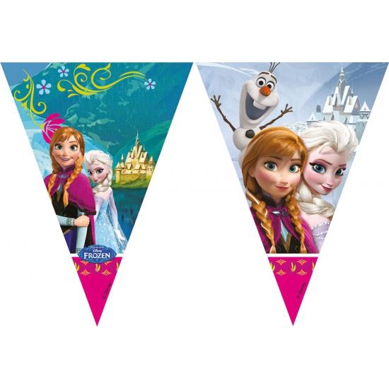 Frozen vlaggenlijnen 2 meter